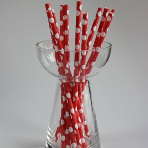 Polka Dot Big Paper Straw - Red